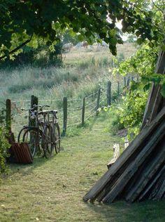Sunnybrook Farm: #Sunnybrook #Farm.