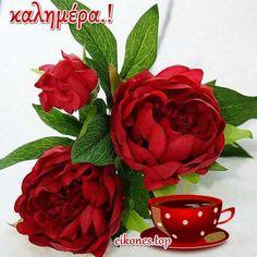 Εικόνες Τοπ:Όλη η ομορφιά χρωμάτων σε μια καλημέρα.! - eikones top Good Morning Good Night, Mom And Dad, Raspberry, Fruit, Plants, Facebook, Top, Raspberries, Plant
