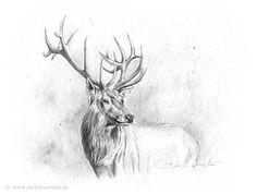 deer tumblr - Hľadať Googlom