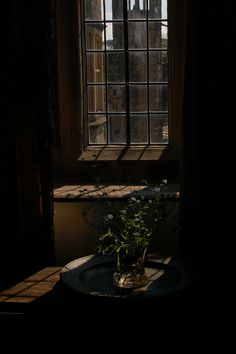 """Forget-me-nots at Haddon Hall. The house and grounds have played host to no less than three versions of """"Jane Eyre"""". Jamaica Inn, Dragonfly In Amber, Yellow Doors, Wuthering Heights, Outlander Book, Romantic Homes, Dark Photography, Derbyshire, Wabi Sabi"""