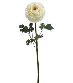 "Bloom Room 29"" Hybrid Ranunculus Stem-White"