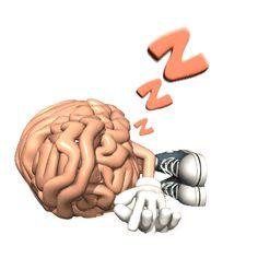 Imagen animada Cerebro 25