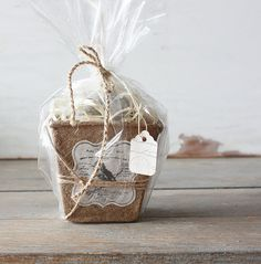 Peat Pot with Weathered Robins Eggs - Set of Six Cute Crafts, Crafts To Make, Diy Crafts, Creative Gift Wrapping, Creative Gifts, Kit Natura, Tiny Tags, Egg Designs, Craft Bags