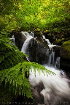 Glow Creek Falls...