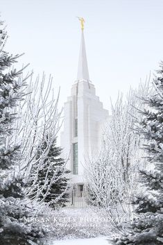 Rexburg Idaho LDS Temple in winter - freezing fog - Church of Jesus Christ of Latter-day Saints - Mormon - Photography Lds Temple Pictures, Lds Pictures, Pictures Of Christ, Rexburg Temple, Rexburg Idaho, Ancient Greek Architecture, Chinese Architecture, Gothic Architecture, Mormon Temples