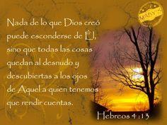 hebreos 4:13