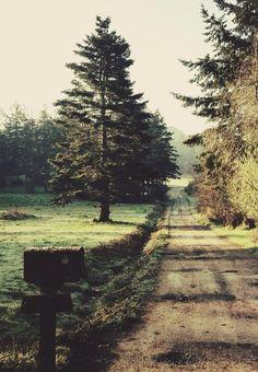 let's take a walk :)