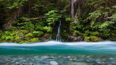 Bacon Peak, WA, United States | Bacon Creek, Mount Baker-Snoqualmie National Forest, Washington - Bing ...