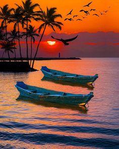 Ocean Sunset, Sea And Ocean, Boat Drawing, Seascape Art, Water Lighting, Beautiful Sunset, Beautiful Places, Beach Art, Sunrise