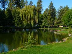 Manito Park, I need to get lost here for the day :)