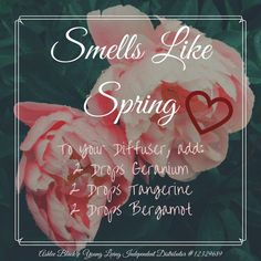 Favorite Spring Diffuser Blends! – The Busy Mama