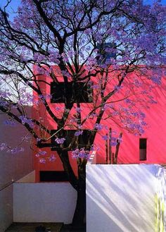 Casa Gilardi in Mexico City designed by architect Luis Barragan. Exterior Design, Interior And Exterior, Art Et Architecture, Home Design, Landscape Design, Villa, Design Inspiration, Decoration, Mexico City