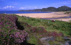 Barra Island is well-known for it's lovely wildflowers. It is located in the Outer Hebrides area of Scotland and is home to Clan MacNeil of Barra. Planes land on the beach Isle Of Harris, Runaway Bride, Highlands Scotland, Outer Hebrides, British Isles, Our Lady, Places To See, Beaches, The Good Place