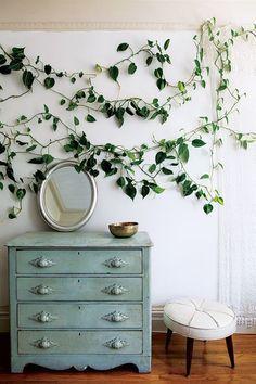 Love the indoor ivy!