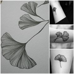 Ginkgo tree leaf tattoos. They represent longevity but they have more meaning to me.