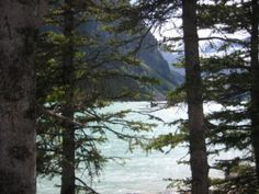 Lake Louise Canada, Plants, Outdoor, Outdoors, Plant, Outdoor Games, The Great Outdoors, Planets