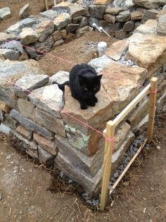 Online Cob House Building Lessons: http://www.members.thiscobhouse.com/online-cob-house-workshop/