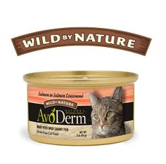 I asked the shopkeeper if he had anything new to try, and he pointed out Avo-Derm, which already sounds great because I like avocados. It has a picture of an avocado for the 'o' in the word. It actually has avocado oil in it, which is supposed to help the cat's skin and coat. The cats thought it was very tasty.