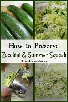 Preserving Zucchini, Preserving Food, Canning Food Preservation, Shredded Zucchini, Backyard Farming, Farming Life, Survival Food, Survival Quotes, Summer Squash