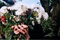 aesthetic, flowers, girl, nature