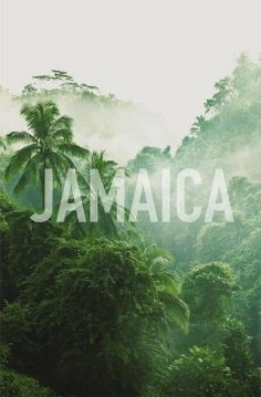 Get lost in Jamaica.... Visit us @ www.reachin4thetop.com. We can make this possible...