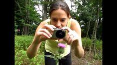 Le Spipoll est un programme de science participative, citoyenne, créé par l'Opie et le Muséum national d'Histoire naturelle (Vigie Nature). Il permet à tous d'aider les scientifiques à mieux comprendre comment fonctionne la pollinisation, tout en apprenant à observer les insectes et à les reconnaître !  Il est tout à fait possible d'organiser des séances Spipoll en famille ou avec un groupe, un centre de loisir, une classe...  Retrouvez la collection créée par Stéphanie lors du tournage ...