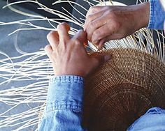 A Hoopa/Yurok weaver makes an acorn cooking basket from hazel sticks and spruce roots