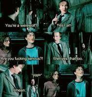Wolfstar, Harry Potter, Remus Lupin, Sirius Black, Hermione Granger, Ron Weasley