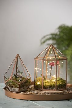 Light your terrarium for magical night time indoor gardens! From the terrarium club board Mini Terrarium, Terrarium Wedding, Glass Terrarium Ideas, Orchid Terrarium, Fairy Terrarium, Terrarium Centerpiece, Hanging Terrarium, Succulent Terrarium, Hanging Plants
