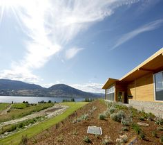 The view from Poplar Grove Winery on the Naramata Bench, just outside #penticton in the #okanagan. #bcwine #canada