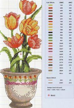 jaronnesconflorevariadass-2.jpg 428×631 pikseliä