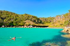 Sydney's Top Ten Wild Swimming Spots | Green Lifestyle Magazine, the best of green