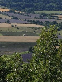 the view from my room in Souix France - the lavender fields appear like patchwork quilts