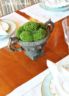 Decorating with moss can be elegant and charming.  It is an inexpensive way to add interest and color to any room.