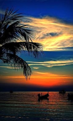 Mexico: Resplandor Acapulqueño Another gorgeous Acapulco sunset, worthy of a book cover for the Emilia Cruz mystery series Beautiful Sunrise, Beautiful Beaches, Cool Pictures, Beautiful Pictures, Amazing Nature, Belle Photo, Beautiful Landscapes, Beautiful World, Nature Photography