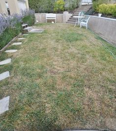 to a Greener Lawn Two weeks to a greener lawn. I wonder if this can bring my dead lawn back to life?Two weeks to a greener lawn. I wonder if this can bring my dead lawn back to life? Green Lawn, Green Grass, Lawn Repair, Lawn Care Tips, Lawn And Garden, Garden Tips, Garden Ideas, Herbs Garden, Fruit Garden