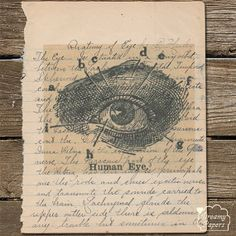 vintage eye print on handwritten textbook medical student opthamologist doctor eye vintage print old book - Prints On Old Book Pages