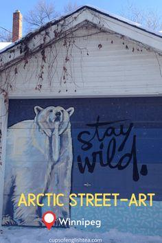 Back Alley Arctic : une allée de street-art polaire à Winnipeg Westminster, Art D'ours, Pvt Canada, Street Art, Les Oeuvres, Cups, English, Explore, Tea
