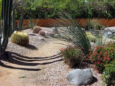 desert landscape ideas Desert landscaping ideas Rock Pathway