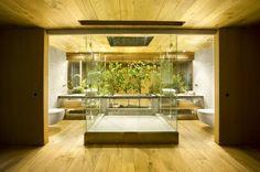 banheiro integrado rústico - Google Search