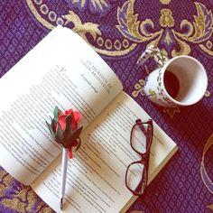 Amamos ler! E você? #livros #amorporler #dicaslivros #indicarlivros #bridgertons #juliaquinn #livrosepoca #books #reading #loveforbooks