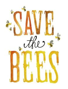 Bee Careful: No Bees, No Food! Filmed across 4 countries, 'Vanishing of the Bees' is a film which examines the alarming disappearance of honeybees and what this means for our food supply globally. This film shows us why over a third of our food relies on honeybees and what we can do to make a difference.
