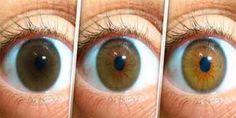Veel mensen hebben problemen met hun gezichtsvermogen. Ongeacht de leeftijd, zijn de ogen veel nodig voor de reguliere dagelijkse handelingen. Dit recept zal u helpen uw gezichtsvermogen op te klar…