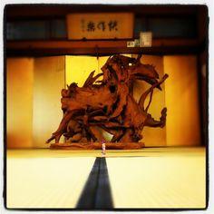 151- @milkapump 山口市菜香亭にて「快作楽」 #30jc #juicnow #yamaguchi