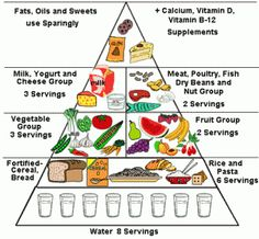 The food pyramid for a healthy nutrition Food Triangle, Healthy Food Choices, Healthy Recipes, Healthy Bodies, Free Recipes, Balanced Diet Chart, Balanced Meals, Tips & Tricks, Food Themes