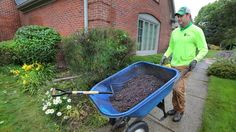 Applying mulch to landscaped areas, around flower beds and trees encourages organic weed control without the use of pesticides and chemicals.