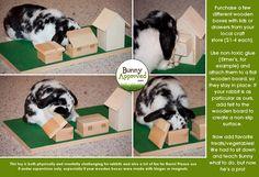Great rabbit toy idea. DIY.