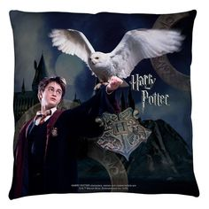 Harry Potter Harry And Hedwig Throw Pillow