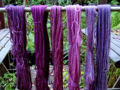 Dyed with Aronia mitschurinii / chokeberry