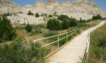 Cliff Shelf Nature Trail boardwalk: No trip to the Badlands is complete without a hiking adventure. Kids agree that the Fossil Exhibit Trail and the Cliff Shelf Nature Trail are two of their favorites.